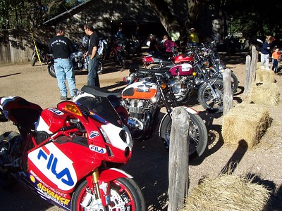Some bikes under the old oak by Luckenbach's dance hall. There were lots more bikes than what is in these pictures.