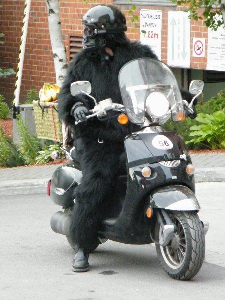 https://photos.smugmug.com/Motorcycles/MBSR-blog-pics/Mbsrpics/i-DN8GXqM/0/4ae5bfac/O/1930086_117323945089_4473667_n.jpg