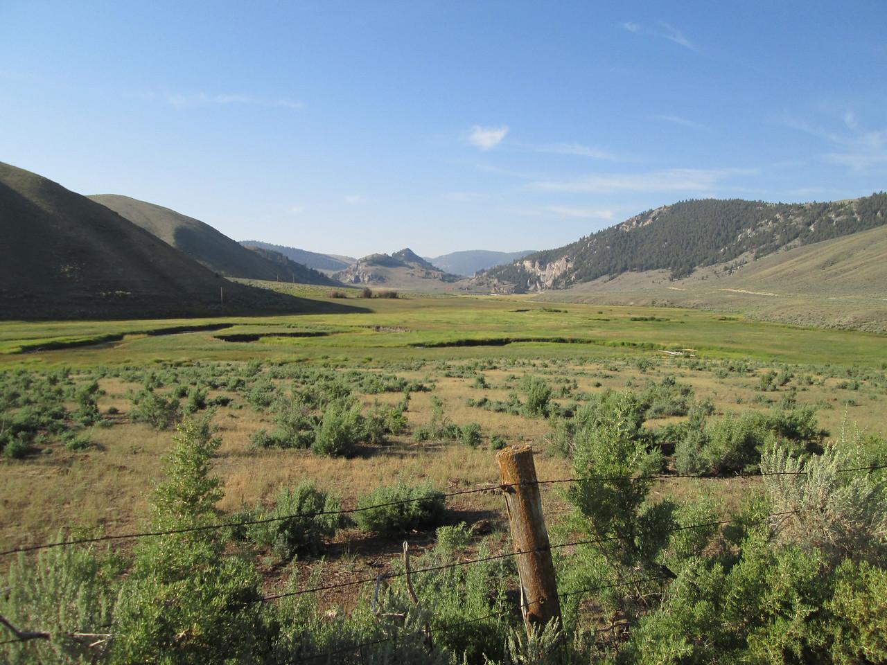 20130815 Green Ranch, Brown Hills