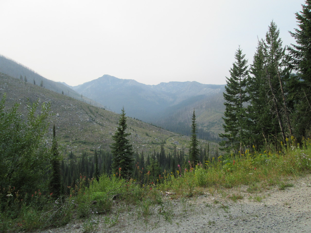 20130811 Elk Meadows Rd 1