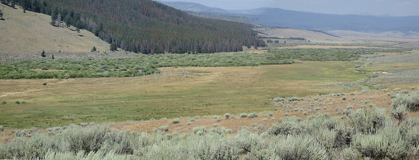 20130815 Big Hole Battlefield Pano