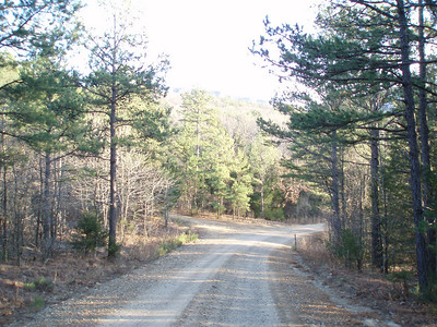From AR 309 Green Bench Rd. connects to Mikles Rd. and Reville Valley Rd. and comes out on AR 109.
