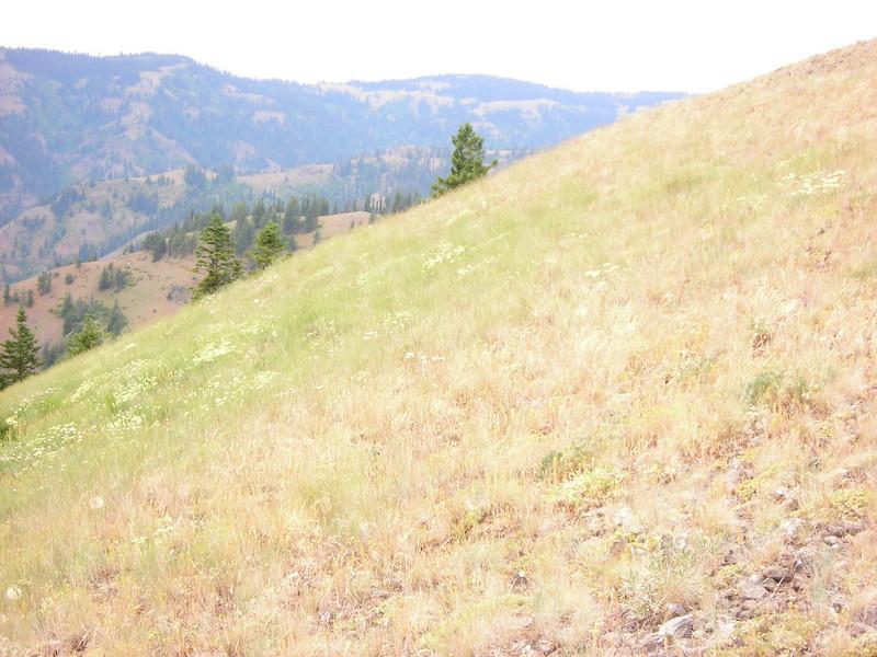 Panorama 146