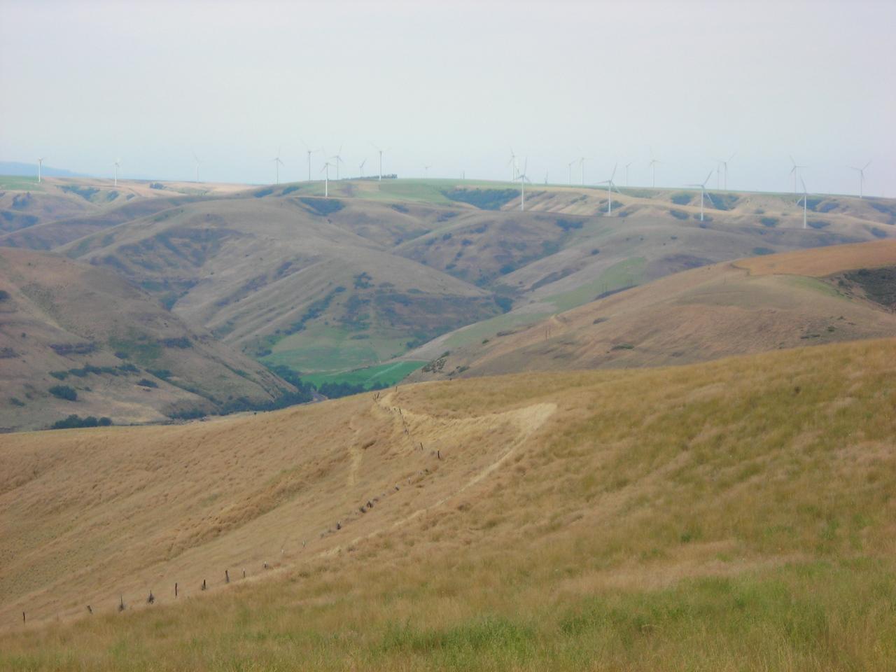 Starveout Ridge Panorama 1