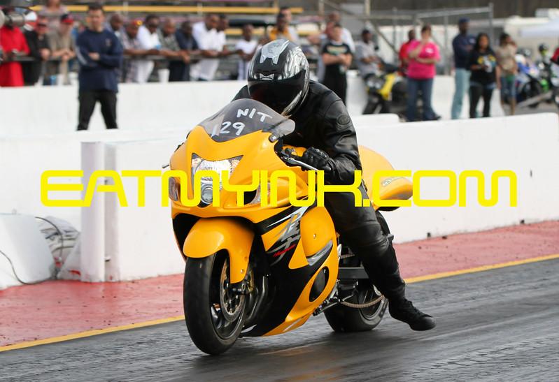 Yellow_Busa_MGshootout14_6812crop