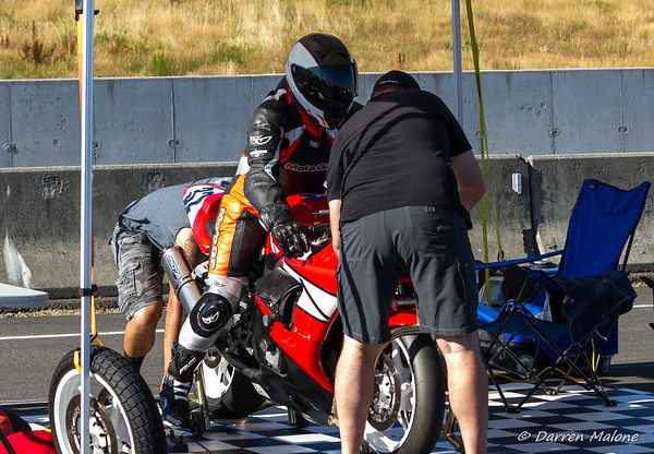 Martin Rogers #32 WMRRA Expert Rider