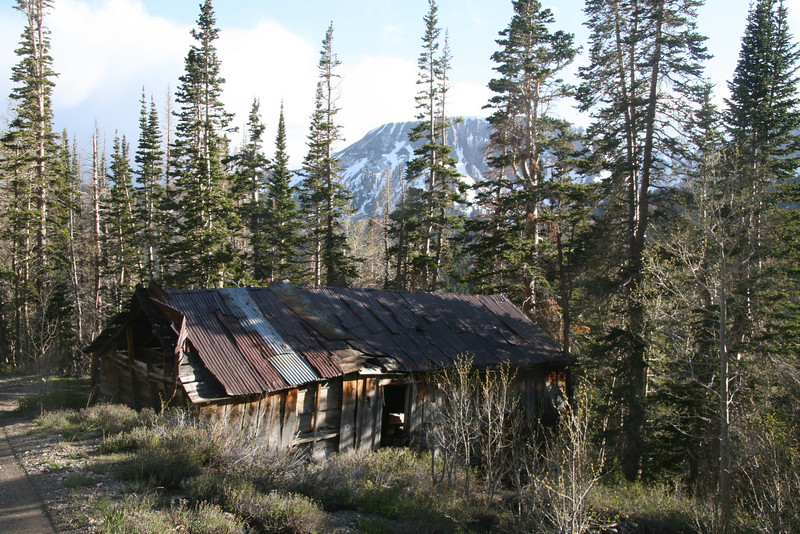 A miner's cabin which is in surprisingly good shape.  This was made from dimensional lumber housing three rooms.  Other older structures are of log cabin construction and date back to the early 1900s.  Foundation, roof and walls are severely sagging under the ravages of the elements.