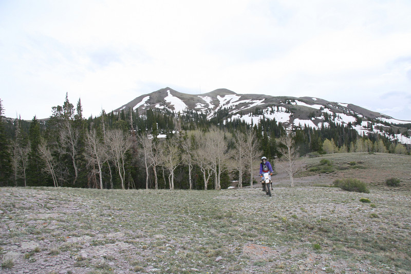 Coming back down the mountain we find this open dome area.  If careful you can ride without leaving a trace.