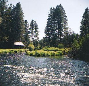 The lovely, and COLD, Metolious River.