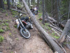 Sunday we did some trail riding. Lots of fallen trees to navigate.