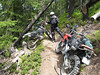 Ron says the trail ahead is blocked. ADVrider salute.