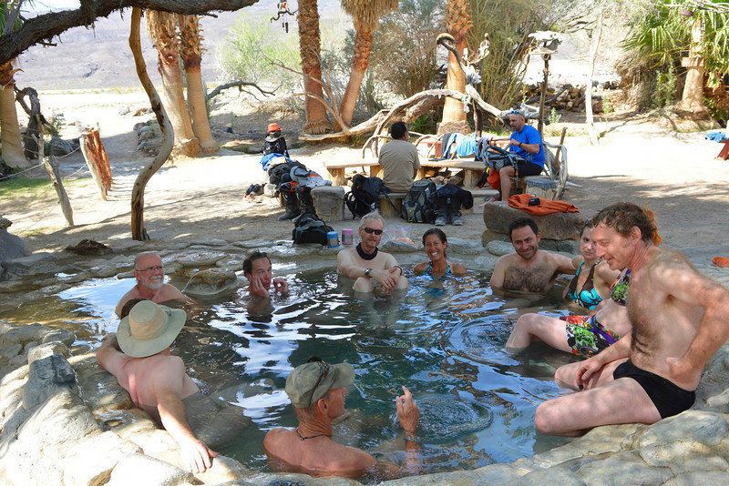 The oasis shade pool keeps everyone happy.