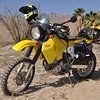 Jack, my DRZ, poses in the desert.