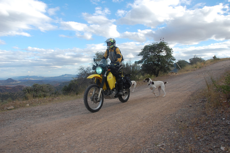 I find a fun dirt ride outside of Bisbee, AZ that comes stock with chasing dogs.