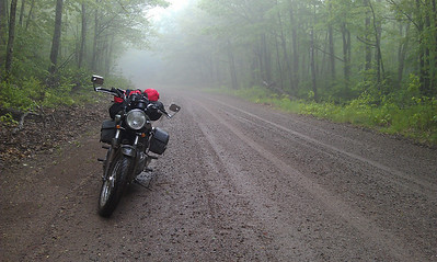 Chequamegon National Forest, Spring 2012