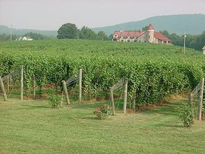 Misc. 2003 Virginia Scenes