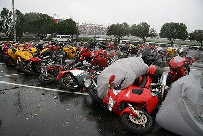 Photo - Indianapolis Moto GP: Ducati Island parking lot just out front of the IMS Museum. Ducati motorcycles, just like sheep.....Ya get one ducati to fall over and they all have to follow :-) Indianapolis Moto GP and Hurricane Ike was the culprit