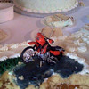 Groom's cake = muddy KLR