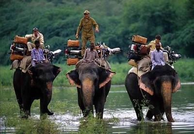 bsa_motorcycles_india_elephants