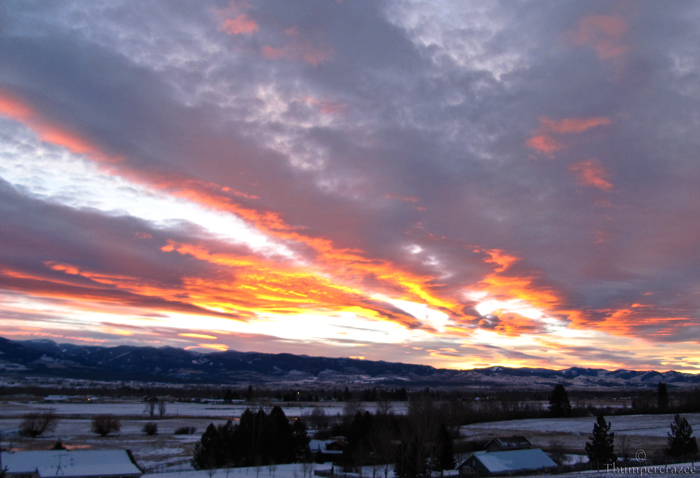 A winters morning, Fire In the Sky. 2011.