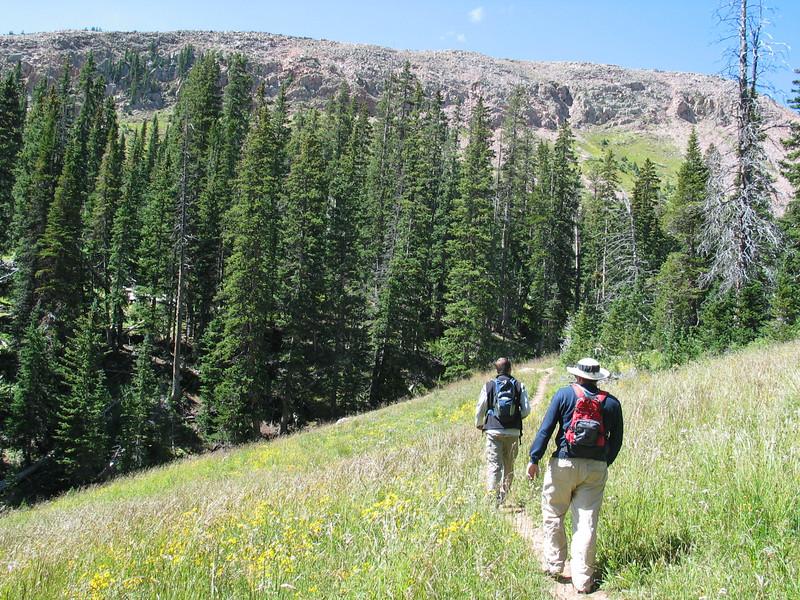 Hiking towards Burro Pass