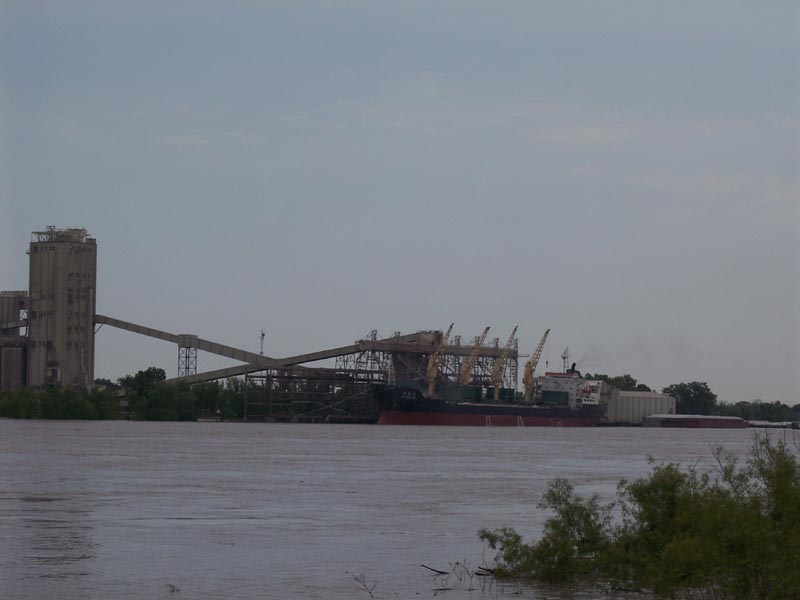 The Mississippi River at Luling, Louisiana