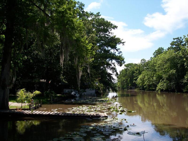 Bayou Country...