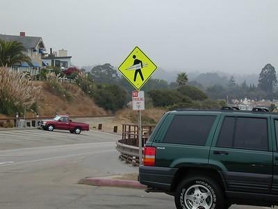 Only in Santa Cruz...