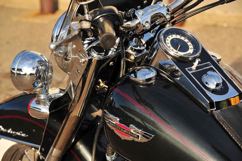 Harley - 01