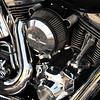 Harley - 02