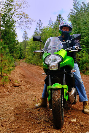 Tamarack Road turns away even on the uber-gnarly Versys dirt bike.