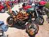 Wild Tigre Ducati!