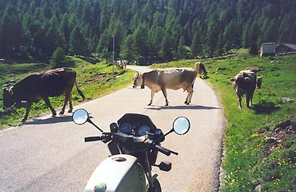 June 25, 1999 - Approaching Passo di Valles, Italy.<br /> <br /> Passo di Valles (2031 m asl) is located between routes 50 and 346 just north of Passo Rolle, Italy. Cows strolling on or across roads are to be looked out for especially after coming around a bend or entering a tunnel.