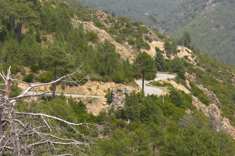 June 21, 2006 - between Aullène and Col de St. Eustache, Corsica.<br /> <br /> The view of the D 420 towards Aullène.<br /> <br /> GPS<br /> N41° 46.036'  E009° 03.096'