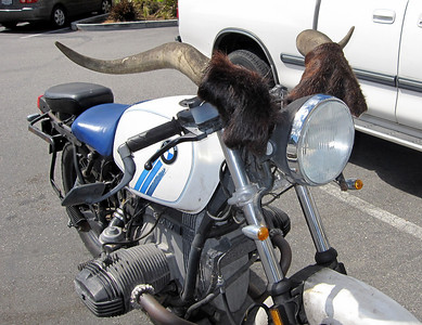Motorcycle with Horns