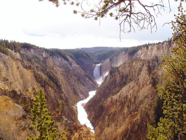 YellowstoneMonday