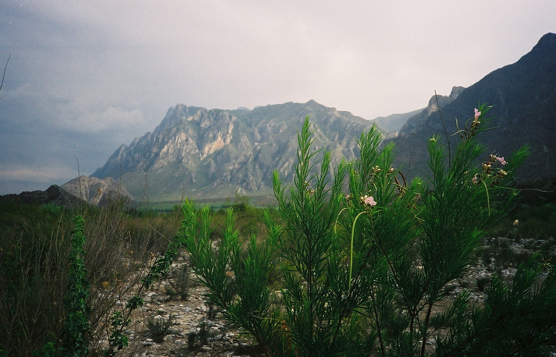 Huasteca canyon, which opens up into Monterrey city proper