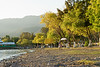 On the shores of Lake Chapala