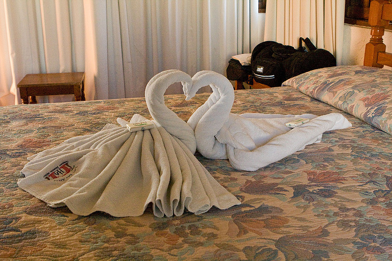 Most of the hotels in this region did these funny things with your towels