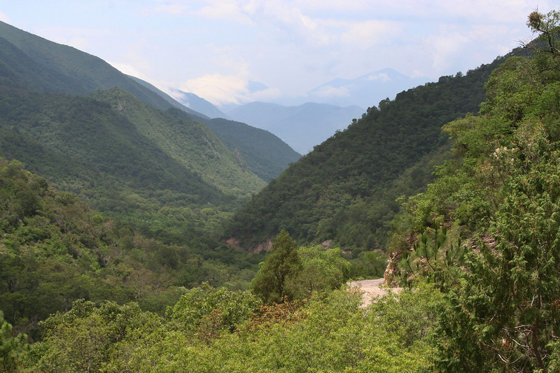 Between Santa Rosa & Cuevas