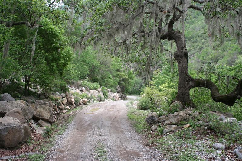 The road between Santa Rosa & Cuevas