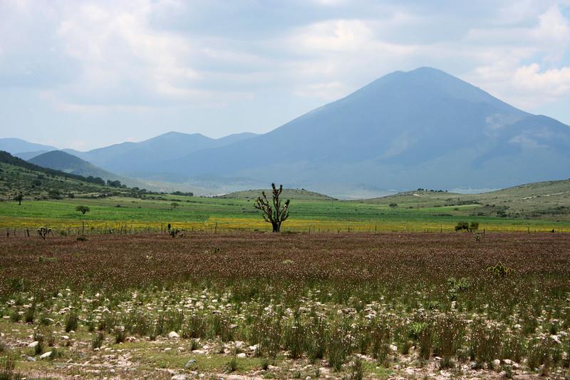 From the Galeana-Dr Arroyo hwy at the Caballada cutoff.  Looking toward La Asencion.