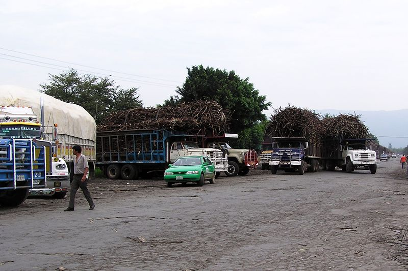 Cane trucks at El Naranjo sugar mill.  We counted 120 trucks waiting in line to be unloaded here.