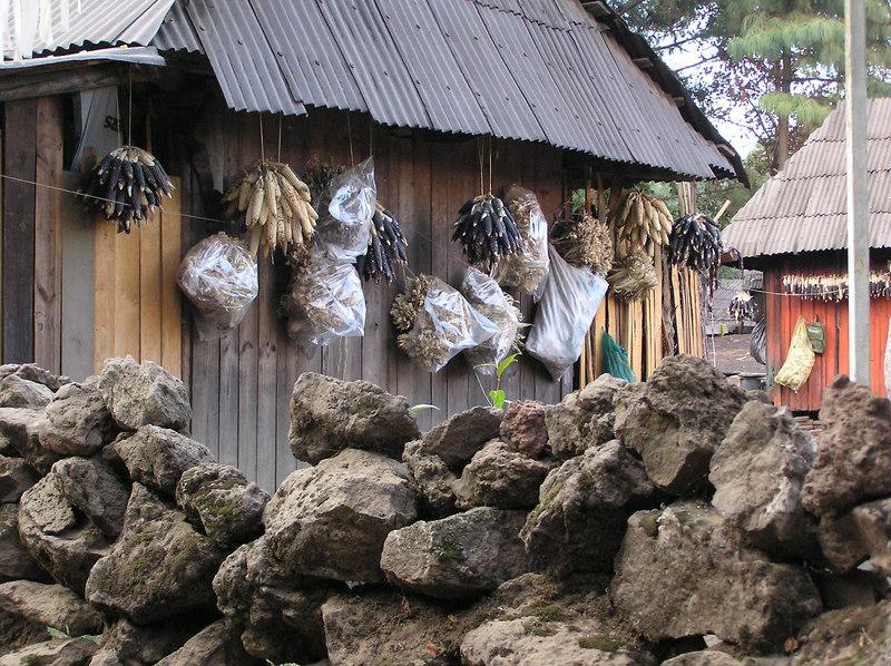 Angahuen, near Uruapan