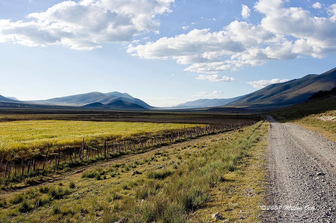 High plateau near Cienega del Toro