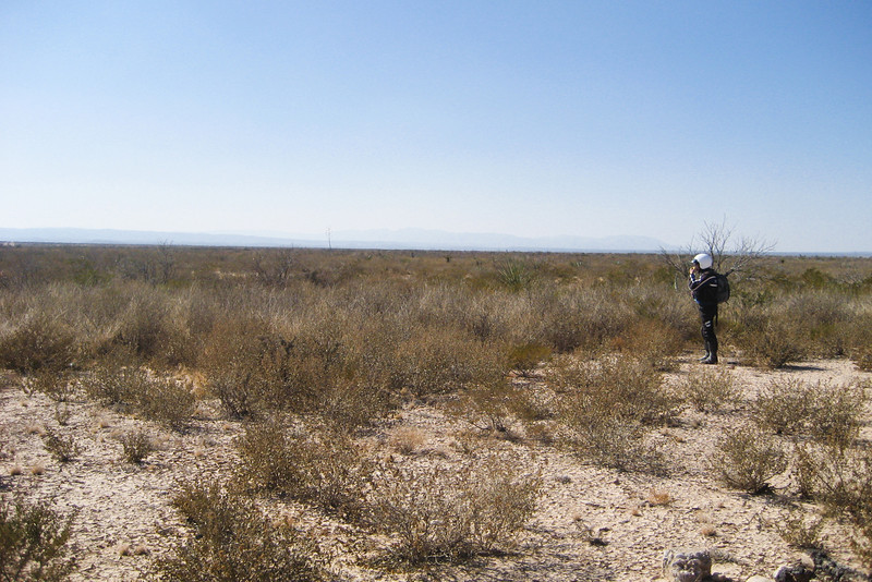 Surveying my campsite of the previous year. Yup, that's the same dead yucca plant that I slept next to last year.