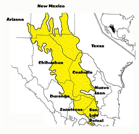 Chihuahuan Desert, map