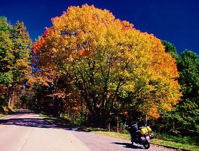 Blue Ridge Pkwy, VA, Oct, 2000b