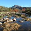 Bushnell Creek, AZ, dec 2005