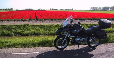 Red panorama..